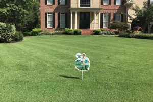 GrassRoots Lawn Care Service