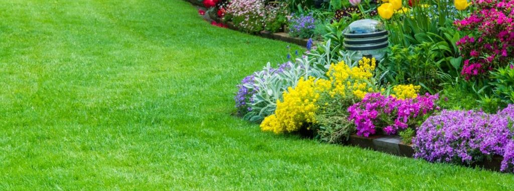 GrassRoots-Lawn-Care-Service-Weed-Control-Shrub-Care-Aeration