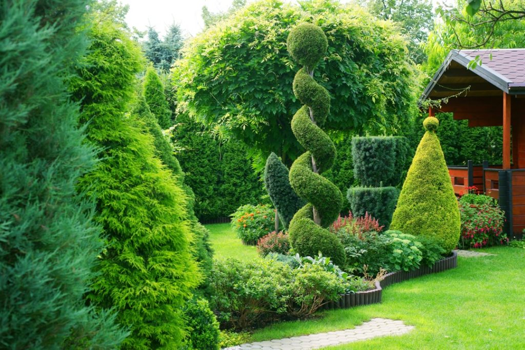 GrassRoots-Lawn-Care-and-Shrub-Care