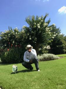 GrassRoots-Tree-and-Shrub-lawn-fertilizer