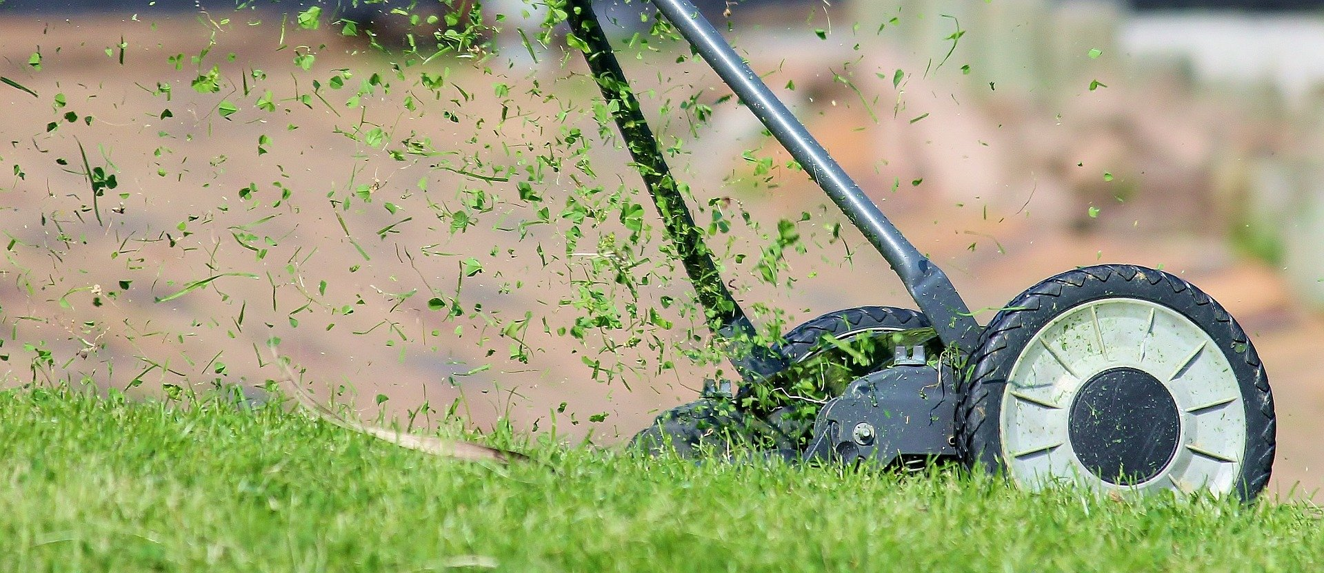 Lawn Maintenance for Spring