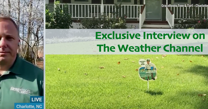 Grassroots interviewed by the Weather Channel